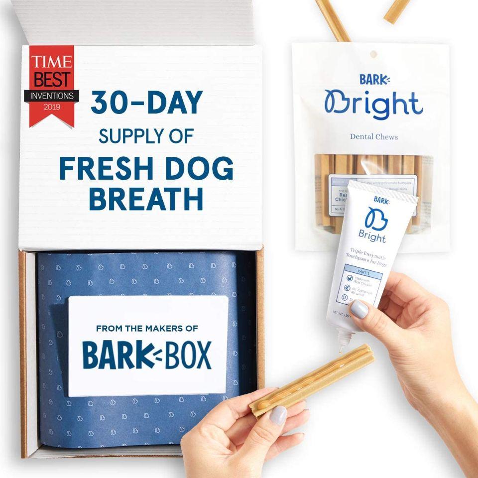 BarkBox Bright Toothpaste