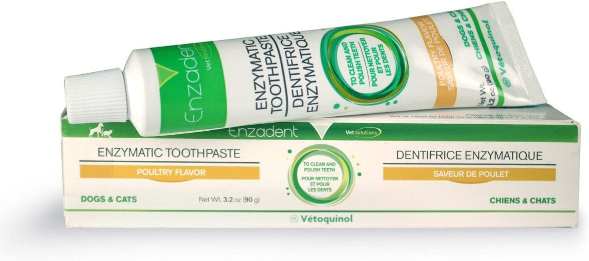 Vetoquinol Enzadent Enzymatic Toothpaste