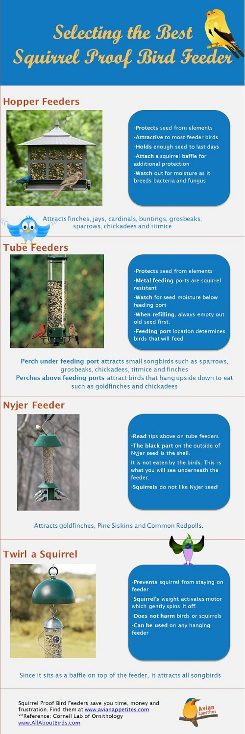 types of squirrel-proof feeders