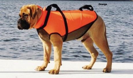 Life jacket4