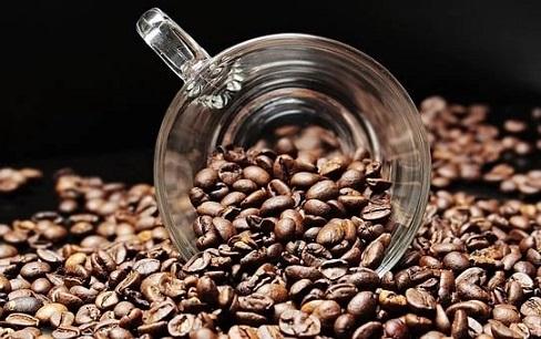 coffee fact6